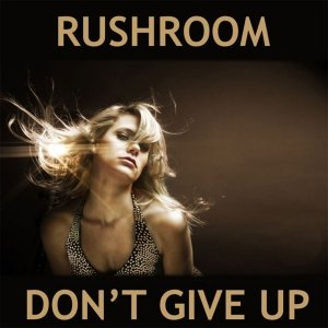 Image for 'Don't Give Up'