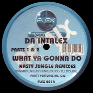 Image for 'What Ya Gonna Do (Nasty Jungle Remixes)'