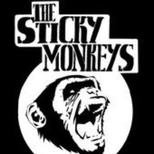 Image for 'The Sticky Monkeys'