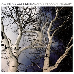 Image for 'Dance Through the Storm'
