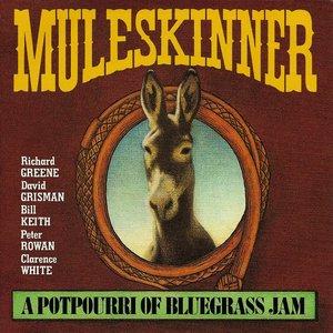 Imagen de 'A Potpourri Of Bluegrass Jam'