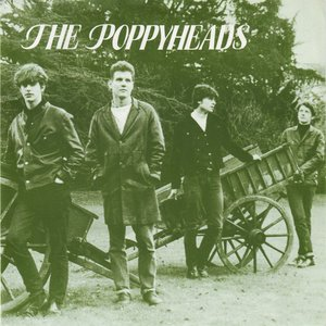 Image for 'The Poppyheads'