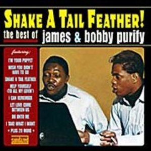Image for 'Shake a Tail Feather: The Best of James & Bobby Purify'