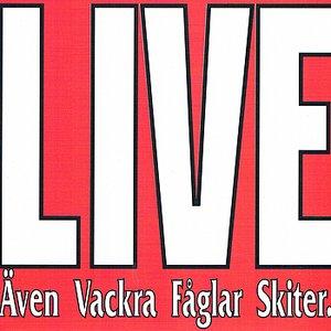 Image for 'Bonnrock (Live)'