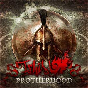 Image for 'Brotherhood (Single 2012)'