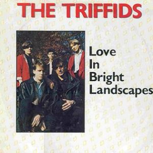Image for 'Love in Bright Landscapes'