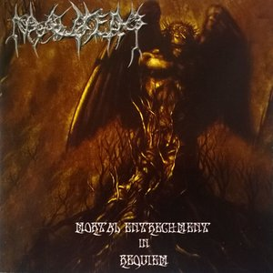 Image for 'Mortal Entrenchment In Requiem'