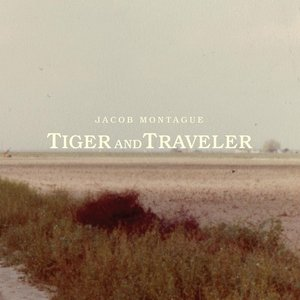 Image for 'Tiger and Traveler'