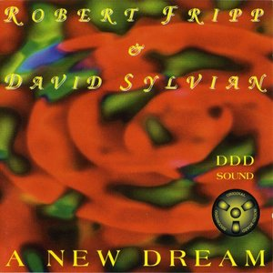 Image for 'A New Dream'