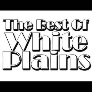 Image for 'The Best Of White Plains'