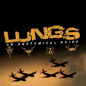 Immagine per 'An Anatomical Guide'