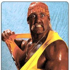 Bild för 'Hulk Hogan'