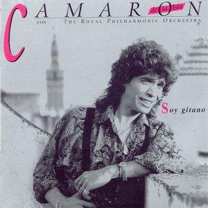 Image for 'Soy Gitano'