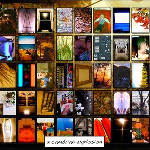 Image for 'Acornography'