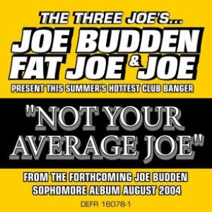 Image for 'Not Your Average Joe'