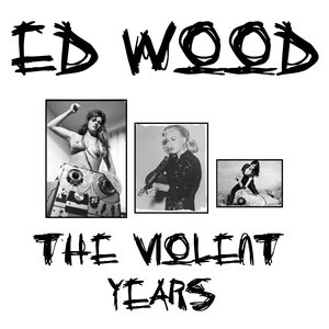 Immagine per 'The Violent Years'