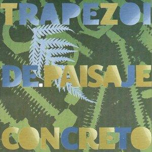 """""""Paisaje Concreto""""的封面"""