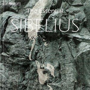 Image for 'III. Caliban's Song'