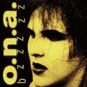 Bild för 'Bzzzzz'