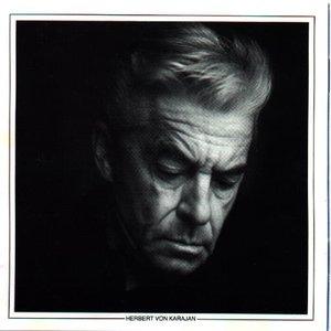 Image for 'Herbert von Karajan/Philharmonia Orchestra'