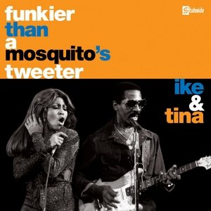 Immagine per 'Funkier Than A Mosquito's Tweeter'