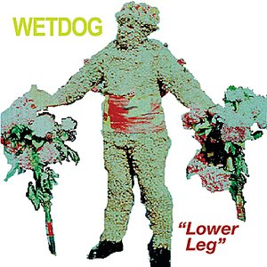 Image for 'Lower Leg - Single'