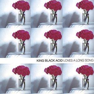 Imagen de 'Loves a Long Song'
