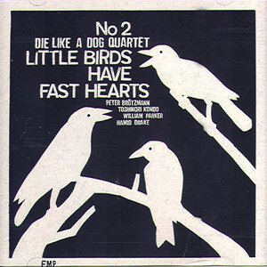 Image for 'Little birds have fast hearts No.2'