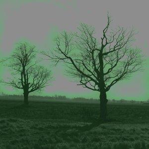 Bild för 'Dark Drone'