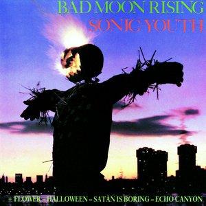 Immagine per 'Bad Moon Rising'