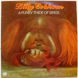 Bild für 'A Funky Thide of Sings'