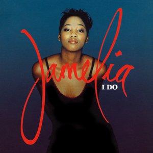 Image pour 'I Do (Album Mix)'