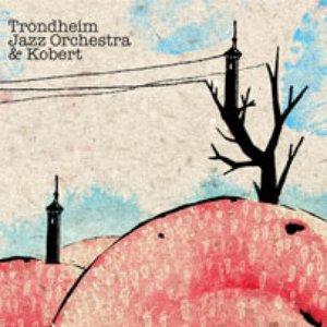 Image for 'Trondheim Jazz Orchestra & Kobert'