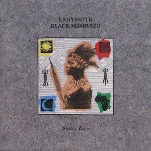 Bild för 'Shaka Zulu'
