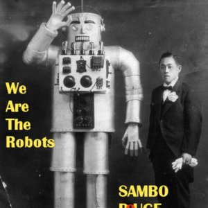 Image for 'We Are The Robots'