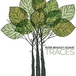Image for 'Traces (Digital release on 9/22/09)'