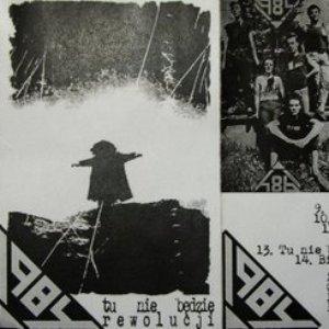 Image for 'Tu nie będzie rewolucji'