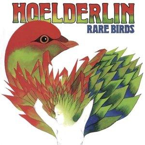 Image for 'Rare Birds'