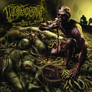Immagine per 'The Slow Decay of Infested Flesh'