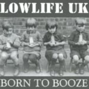 Image for 'Born to Booze'