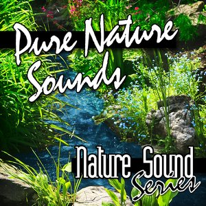 Image for 'Pure Nature Sounds'