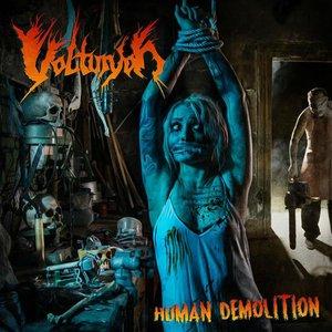 Image for 'Human Demolition'
