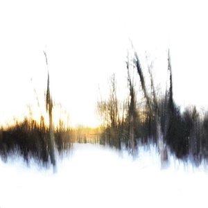 Image for 'Von Veneer'