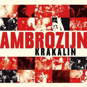 Image for 'Krakalin'