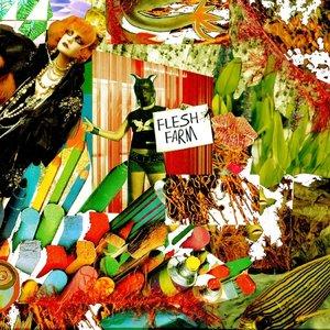 Image for 'Flesh Farm'