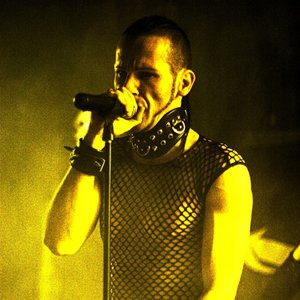 Image for 'Seelenzorn'