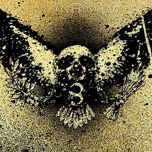Image for 'V is for Vulture'