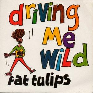 Imagen de 'Driving Me Wild!'