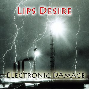 Image for 'Electronic Damage'