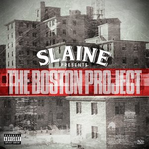 Image for 'The Boston Project'